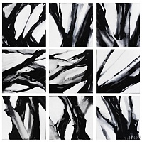 Abstract from nature (polyptych)
