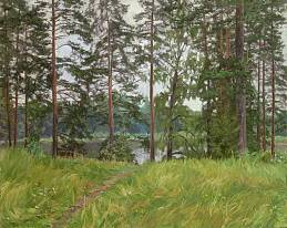 Pine trees on the lake